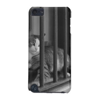Cat at Window iPod Touch (5th Generation) Cases
