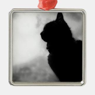 Cat ate Night Feline Animal cap Cat Puss Pussy Silver-Colored Square Decoration