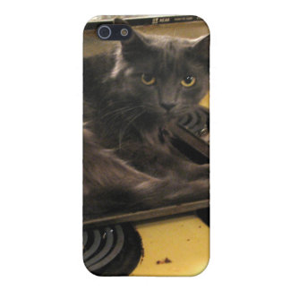 Cat Baked iPhone 5/5S Covers
