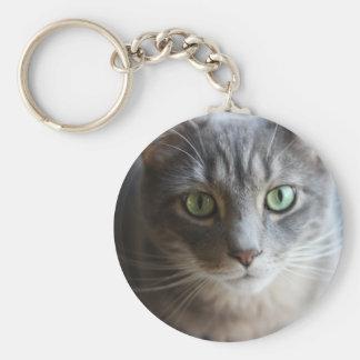 cat basic round button key ring