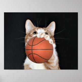 Cat basketball poster