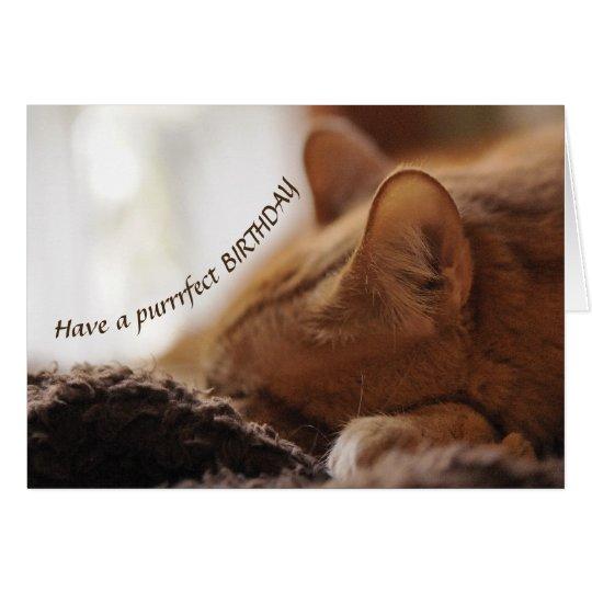 Cat Bday card