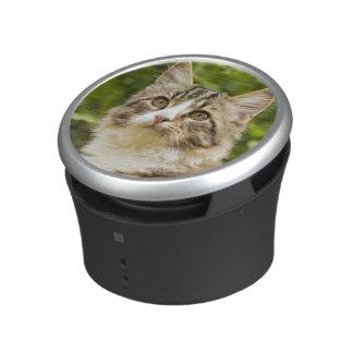 Cat Bluetooth Speaker