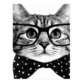 cat bow tie - Glasses cat - glass cat Postcard