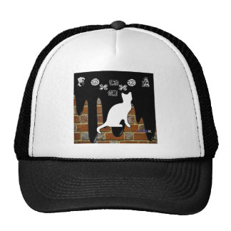 CAT BRICK BACKGROUND PRODUCTS HAT