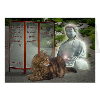 Cat-Buddha nature Card