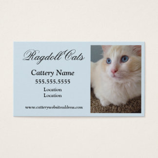 Cat Business Cards
