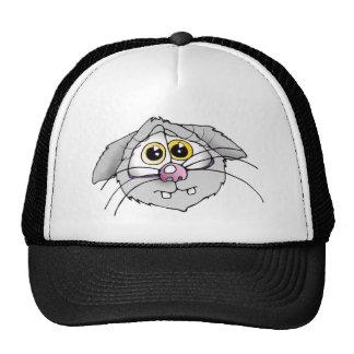 cat, cat, cats, cats, cap, cap