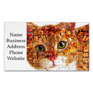 Cat - cat collage 	Magnetic business card
