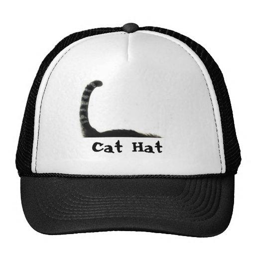 cat, Cat Hat