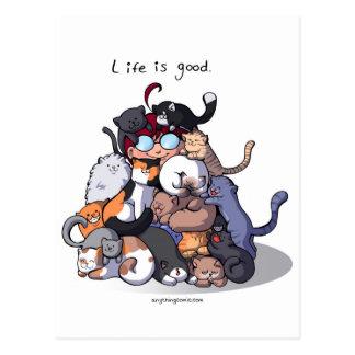 Cat cave postcard