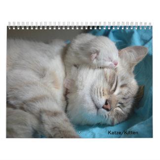 Cat/cements Wall Calendar