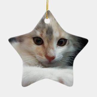 cat ceramic star decoration