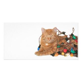 Cat Christmas light tangle Photo Card Template