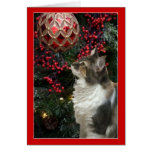 Cat Christmas ornament funny greeting card