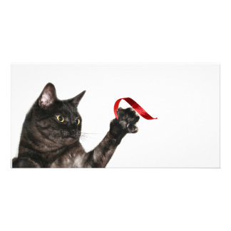 Cat Christmas ribbon Picture Card