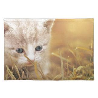 Cat Cute Cat Baby Kitten Pet Animal Charming Placemat