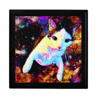 Cat Dance Kitty Colorful Cute Disco Gift Box