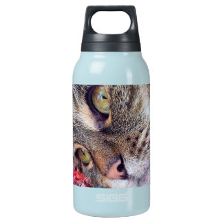 Cat Daydreaming Bottle Hot & Cold