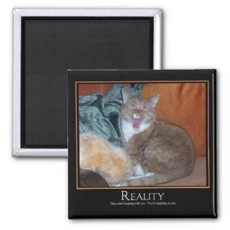 Cat Demotivator Square Magnet