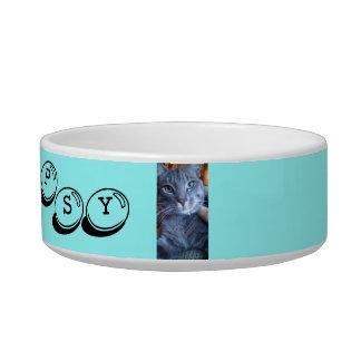 cat dish pet food bowl