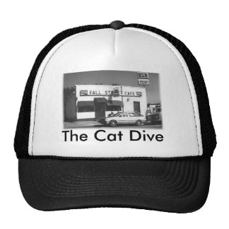 Cat Dive Hat