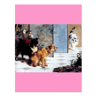 Cat DOGS Playful friends painting relationship Postcard