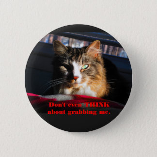 Cat Don't even think about grabbing me 6 Cm Round Badge
