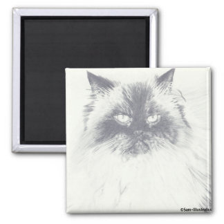 Cat Drawing Magnet