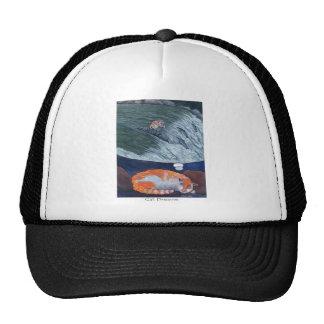 cat dreams mesh hat