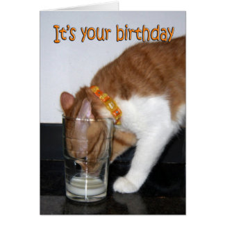 Cat Drinking from Glass Happy Birthday Card