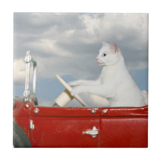 Cat driving a car small square tile