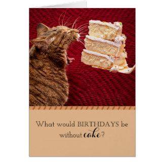 Cat eating cake card