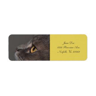 Cat Eye-Macro by Shirley Taylor Return Address Label