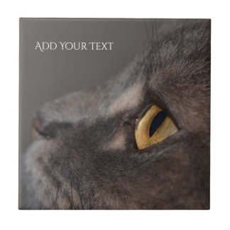 Cat Eye-Macro by Shirley Taylor Small Square Tile