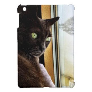 Cat eyes reflected in snow iPad mini case