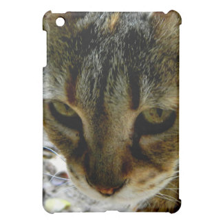Cat eyes stare case for the iPad mini