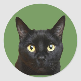 Cat face classic round sticker