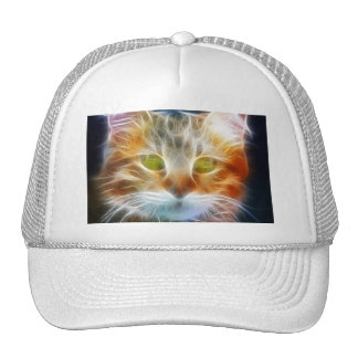 Cat Face Close up Hats