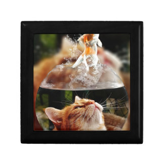Cat Face Goldfish Glass Close View Eyes Portrait Gift Box