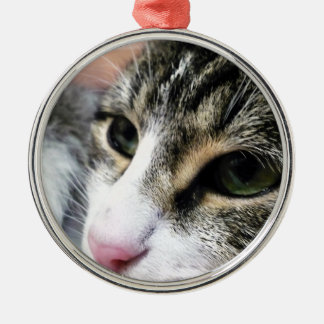 Cat Face Premium Ornament