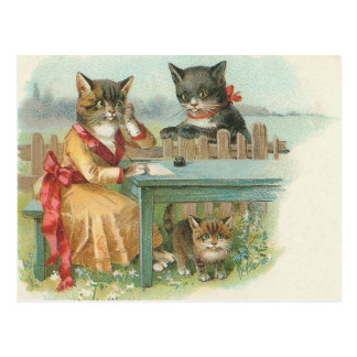 cat family postcard