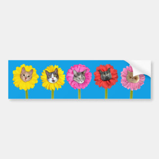 """Cat Flowers"" Garden LOL Funny Bumper Sticker"