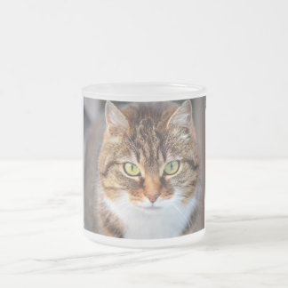 Cat Frosted Glass Coffee Mug