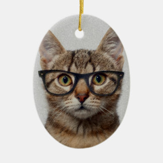 Cat geek ceramic ornament