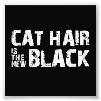 Cat Hair is the New Black Photograph