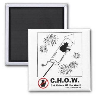 Cat Haters Fireworks Magnet