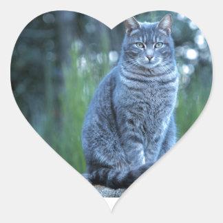 Cat Heart Sticker