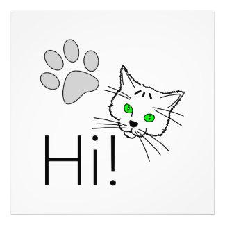 Cat - Hi! Photographic Print