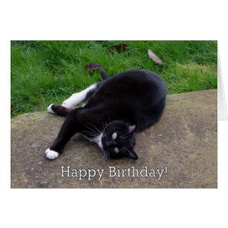 Cat Humor Birthday Greeting Card